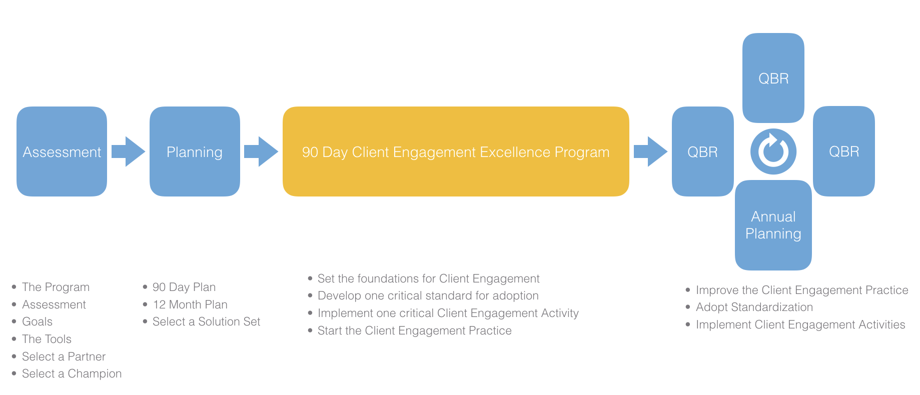 client-engagement-excellence-program-process