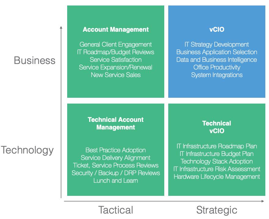 virtual CIO roles